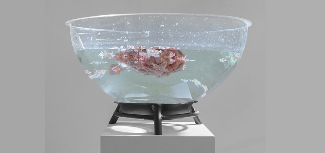 Jenny Brockmann: ' ''Irreversible Moment' 20-14-220-9'', Plexiglas Bowl, Wax, Water, Schering Foundation, 2014, photo: Bernd Hiepe, © the artist